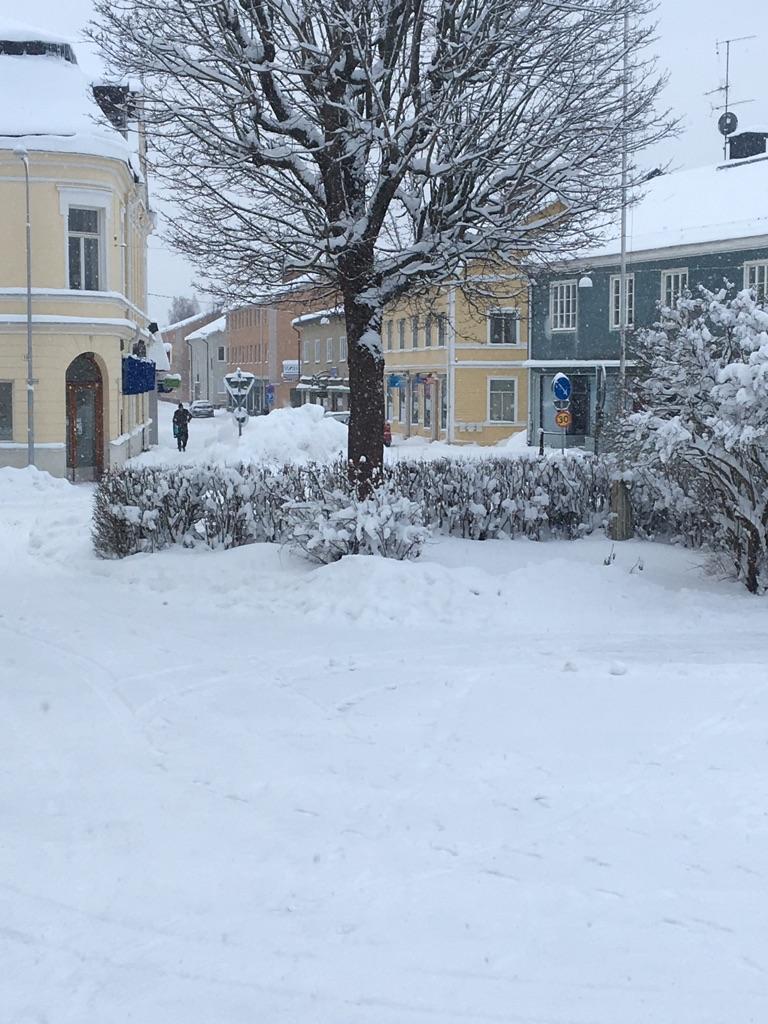vintervyengelbrektsg_154511
